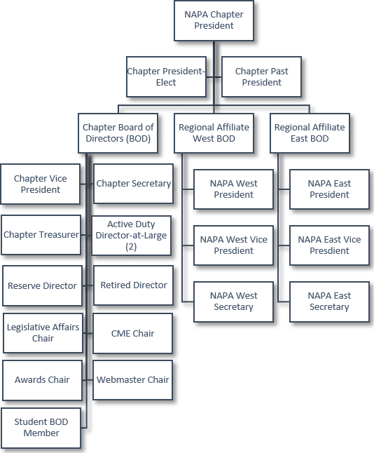 napa org structure 2