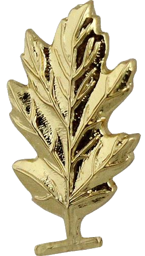 navy medical service corps insignia